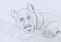 brown bear (devinderry) Tags: animalart zooart animaldrawing zoodrawing