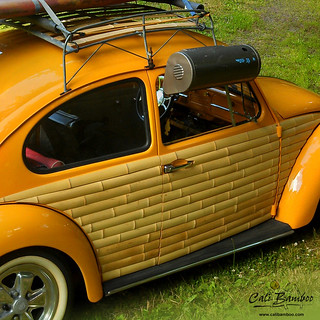 bamboo_vw_bug_square