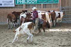 BJ1A9142 (yoann.coin) Tags: horse france western cutting equitation ncha remoray