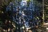 Ramona Falls (dmitry.antipov) Tags: oregon 6d 241054lis