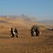 Libia 03-04 116