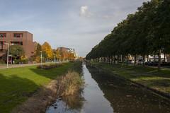 Floriade_251015_35 (Bellcaunion) Tags: park autumn fall nature zoetermeer rokkeveen florapark