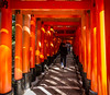 Lost in Torii (-Astin-) Tags: trip travel vacation japan kyoto trips shrines fushimiinari toriigate canon7d tokina111628
