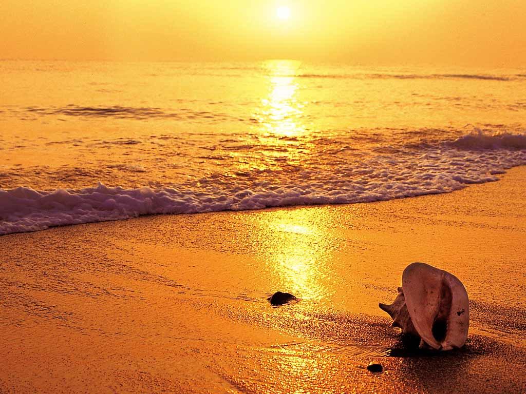 Ráng chiều trên biển