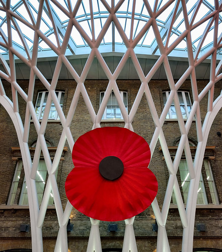 Kings Cross Station Poppy
