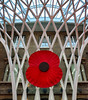 "Kings Cross Station Poppy • <a style=""font-size:0.8em;"" href=""http://www.flickr.com/photos/14071972@N03/22924800055/"" target=""_blank"">View on Flickr</a>"