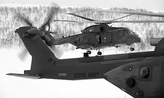 (aeroman3) Tags: terrain snow mountains ice weather norway training landscape woods snowy aircraft rocky arctic equipment helicopter merlin snowing climate wooded personnel bardufoss royalnavy mountainous royalmarines 846squadron nonidentifiable hmmkiii