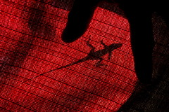 Silhouettes (donjuanmon) Tags: shadow red silhouette reptile fingers lizard anole hmm sliders backlighted hss inexplore macromondays slidersunday donjuanmon