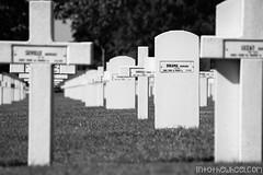 Première guerre mondiale : dans l'Est de la France