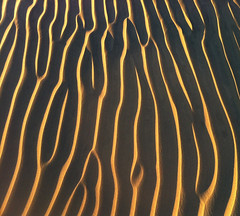 Ripples (blue corgi) Tags: ripples deathvalleynationalpark dunes iphone4
