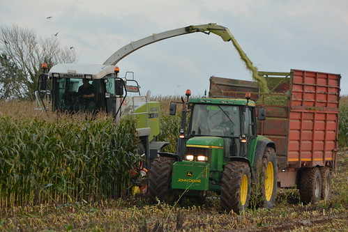 Claas Jaguar 890 SPFH filling a Redrock Silage Trailer drawn by a John Deere 6910 Tractor