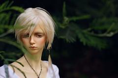 Lost (Shimiro Kestrel) Tags: bjd doll kanadoll adrian portrait outdoor bjdphotography bjdportrait bjdcustom bjdhybrid spiritdoll dollphotography kanadolladrian
