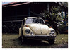 17_02_05_199p (2) (Quito 239) Tags: volkswagen 1971volkswagen 1971volkswagensuperbeetle superbeetleconvertible vw bug vocho escarabajo puertorico haciendaigualdad volky