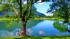 Bavaria: Idyllic Lake (gerard eder) Tags: landscape landschaft paisajes nature natur world travel reise viajes europa europe germany alemania deutschland bavaria baviera bayern chiemsee grassau reifingersee wasser water lake lago see idylle idyllic summer chiemgau alpen alps alpmountains alpes outdoor
