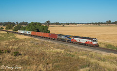 Case In Point (Henrys Railway Gallery) Tags: g532 gclass vl362 vlclass emd diesel clyde qube qubelogistics cf cfcla chicagofreightleasingaustralia 9374 tocumwal container containertrain loadedcontainertrain freighttrain loadedfreighttrain northeastvictoria nagambie
