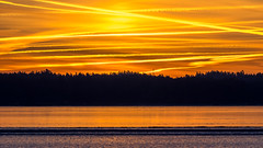 Stripes (Jens Haggren) Tags: olympus em1 presunrise sunrise sky colours stripes orange silhouettes trees ice reflections winter sea seascape landscape morning nacka sweden jenshaggren