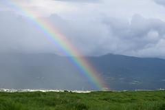 DSC_0844 (RiNA-87) Tags: rainbow