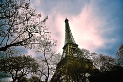 Romance with Eiffel (continued...) (Rupam Das) Tags: nikon nikkor outdoor 1024mm wide angle paris france eiffeltower architecture icon sky dusk evening silhouette branch outline twilight travel cloud structure tower tree