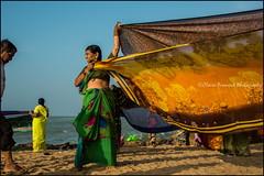 Saris.  Kanyakumari (Claire Pismont) Tags: asia asie inde india indedusud travel travelphotography tamilnadu travelshot temple sacredbath sacred sari drying laundry pismont clairepismont viajar voyage documentory