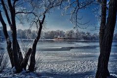 View Across the River in Winter (smuta2006) Tags: winter river riverfront creek backwater dnieper dnipro riverbank bank beach island snow snowdrift snowfall white flake icebound ice floe frost frozen hoarfrost rime water nature natural beauty naturalbeauty tree trunk stem bole rind bark grove copse wood woods forest undergrowth plant rush reed cane duckweed bush shrub twig branch weed sky cloud shadow reflection cold coldness chill waterscape landscape scenery kyiv kiev ukraine europe affinityphoto hdr nondslr sony nex nex5r
