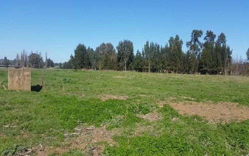 Lot 3 Icely Road, Canowindra NSW