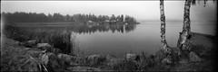 Stråkan (Foide) Tags: finland panoramic pinhole blackwhitephotos pinholetree filmfilmforever f233 realitysosubtle rss141