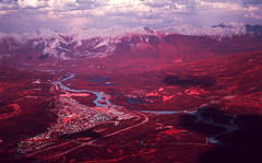 img023 (Photo Taker #9) Tags: infrared orangefilter colorinfraredfilm aerochrome