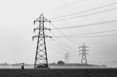 @Madambakkam, Chennai. 2012 (ayashok photography) Tags: winter india mist man green yellow fog asian asia village rice indian desi farmer bharat bharath desh barat barath colorsofindia incredibleindia madambakkam february2012 nuthancheri ayashoknikonnikond300nikkor85mm18tamilnadu farmpaddyfieldmorning