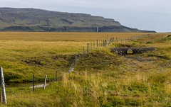 Au loin les cascades (Far away, the waterfalls) (Larch) Tags: landscape scenery cascade waterfall montagne mountain clôture fence pasture campagne country herbe grass islande iceland áíslandi inexplore