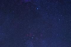 Part of Cygnus (constellation) (delpax) Tags: fuji schwan fujinon sadr vixen constellation 290 deneb cyngus sternbild xt1 astrometrydotnet:status=solved delpax polarie astrometrydotnet:id=nova1281746