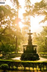 Chafariz do Jardim Botnico (Alan Soares Rio) Tags: rio brasil de janeiro botnico jardim
