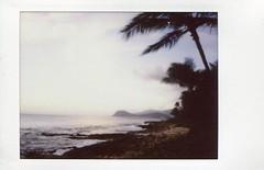 Paradise cove, oahu (teacup_dreams) Tags: hawaii paradise oahu cove instax