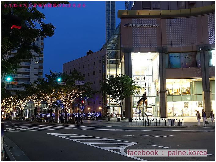 神戶港夜景 (5).JPG