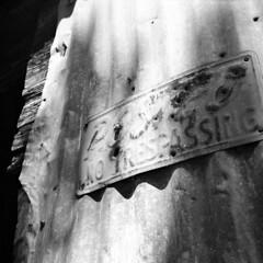 Posted (Coerulus) Tags: bw 6x6 tlr film mediumformat blackwhite squareformat vintagecamera ilfordxp2 ei400 1950 rolleiflexautomat6x6 3575mmtessartwinslensreflex rolleiflexmxmodel1