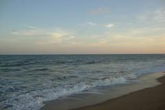 DSC05706 (rajeev2411) Tags: beach pondi