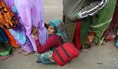 A face in the crowd (pathikdebmallik) Tags: old winter india standing bag sitting oldlady saree kolkata oldage calcutta ganges sagar bihar grasp sarees bihari gangasagar babughat gangasagarmela