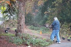 Trueblood Memorial Planting in the East Asian Collection (UC Davis Arboretum & Public Garden) Tags: asian memorial arboretum east collection uc volunteer davis planting trueblood