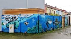 Venom / Korhoenstraat - 13 dec 2015 (Ferdinand 'Ferre' Feys) Tags: streetart graffiti belgium belgique belgië urbanart graff ghent gent gand graffitiart venom arteurbano artdelarue urbanarte