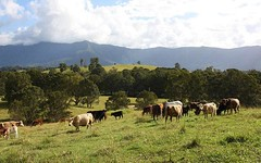 LOT 22 Larkins Road, Murwillumbah NSW