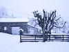 Le jour d'après (Grand-Pappà...) Tags: auvergne hauteloire hautesterres lobeç margeride marjarida massifcentral neige nieve nèu snow