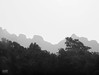Nature in slices (Sid da' Cool) Tags: blackandwhite darkseries devide division forest monochrome mountainrange mountains nature nh nh48 shadesofgrey slices trees wilderness