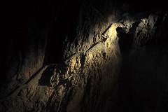 Old Path (Don César) Tags: skocjan slovenia eslovenia caves cueva espeologia luz light europe europa road camino escaleras stairs dark obscuro škocjan unesco