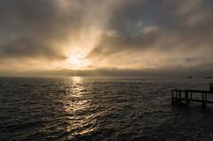 Petit matin brumeux (bertrandguimberteau) Tags: lavigne bassindarcachon brouillard leverdesoleil