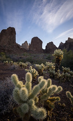 King of Arizona (Sierra_Summits) Tags: arizona sofa desert hiking winter southwest rock dirt saquaro cactus cacti cholla warm sonora sharp new 2017 fresh clouds