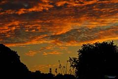 Amaneciendo 2 (Carlos Durán Photography/CAD) Tags: amanecer amaneciendo cloud sun sunset amina mao valverde silueta day dia republicadominicana rd carlosduran