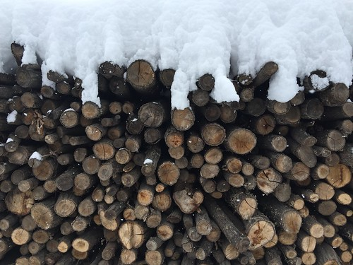 Follow me on instagram: pandevonium_images Log Winter Stack Snow Timber Heap Woodpile Nature Cold Temperature Large Group Of Objects No People Forestry Industry Close-up Day Outdoors IPhoneography IPhone Detail Extreme Weather Copy Space Backgrounds Seaso