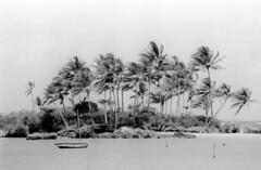 Magico Morro (tullio dainese) Tags: 1987 varie morrodesãopaulo cairubahia brazil biancoenero blackandwhite pretoebranco noiretblanc paesaggio landscape