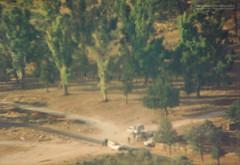 Marketplace (Normann Photography) Tags: 1992 fntjeneste forsvaret kontigent29 lebanon libanon peacecorps unservice unifil unitednations unitednationsinterimforceinlebanon peacekeepers kawkaba nabatiyehgovernorate lb