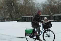Amsterdam (Elisa1880) Tags: amsterdam nederland netherlands sneeuw snow koud winter cold man fiets kind child bicycle bike