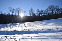 PHO_0182 (Dimi_M) Tags: neige soleil nature foret